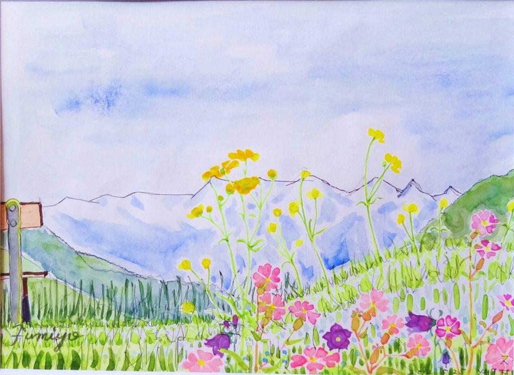 ソーリオのお花畑からアルプスを望む