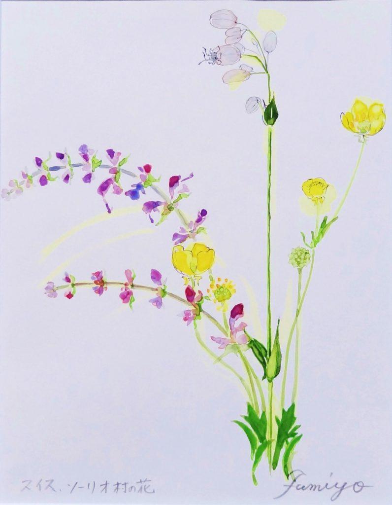 ソーリオ村のお花